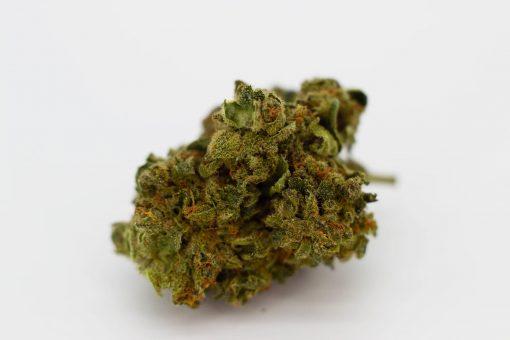 Cannabis Light Cbweed Super Silver Haze CBD