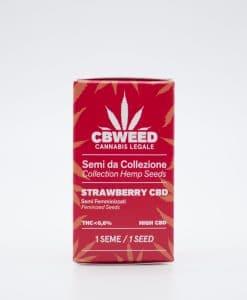 Semi femminizzati Strawberry CBD