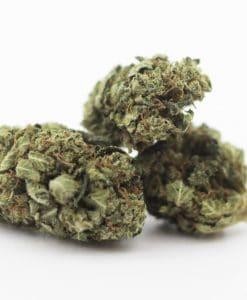 Cannabis Light White Widow CBD 2g EU